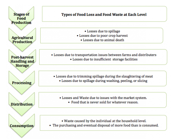 3_Causes of Food Waste